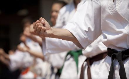 Shito Ryu Shiko Karate Do India