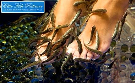 Its Fishy Fish Pedicure Spa