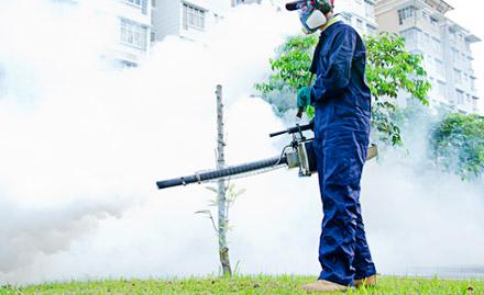 Earth Pest Control