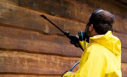 Terminate Pest Control